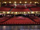 Harlequin standfast Birmingham Hippodrome